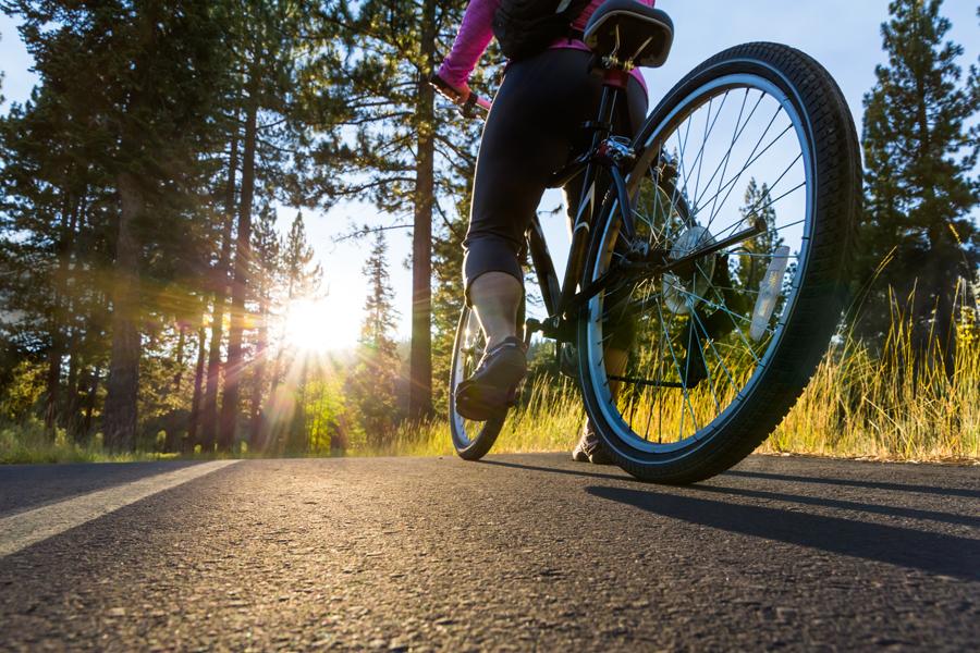 Noleggio bici a San Quirico d'Orcia: ecco a chi rivolgerti